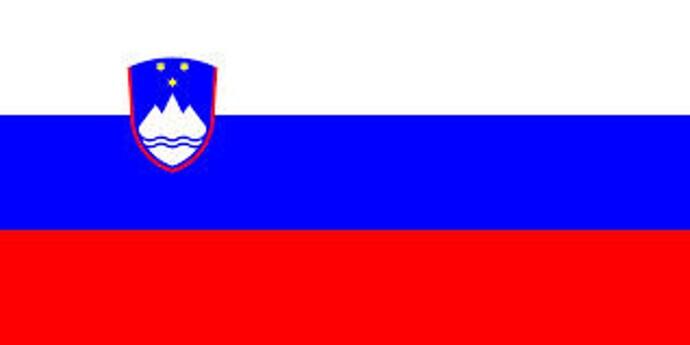https://www.vaillant.hr/images-2/slike-2014/zastava-slo-155183-format-flex-height@690@desktop.jpg